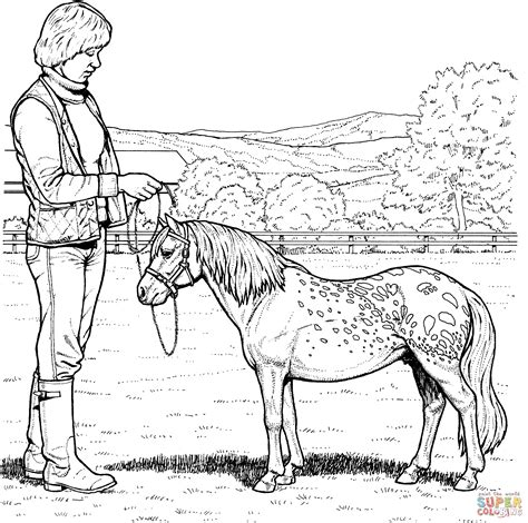a book coloring page supercoloring com shetland pony coloring online super coloring