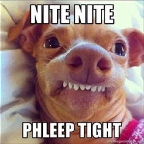 Funny Goodnight Memes - good night meme kappit