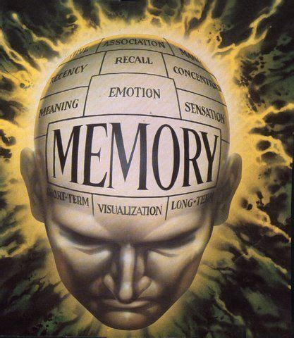 photographic memory learn anything faster advanced techniques improve your memory remember more and increase productivity simple proven of unlimited memory stoic guide to mastery books brain course courses