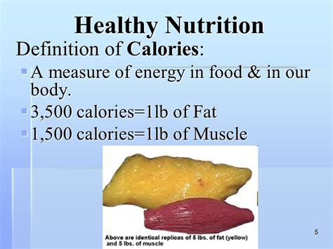 definition of healthy fats nutrition your health ppt
