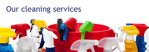 cleaning companies lady cleaning services sha excelsior org