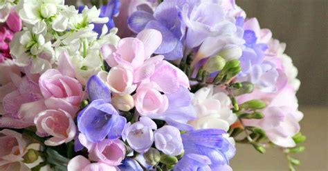 fiori di primavera my roseinitaly delicati fiori di primavera