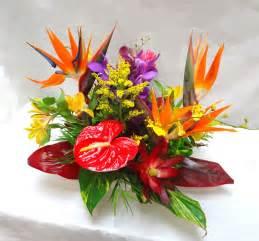 tropical flower arrangements centerpieces tropical arrangements a special touch florists serving