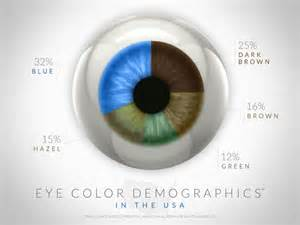 percentage of eye colors eye color demographics in the usa visual ly