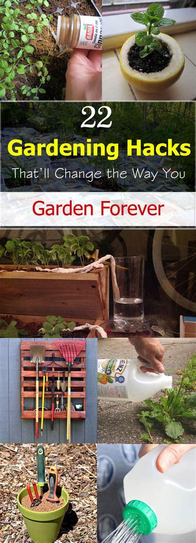 gardening hacks thatll change    garden