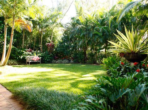 tropical backyard gardens tropical garden coorparoo boss gardenscapes