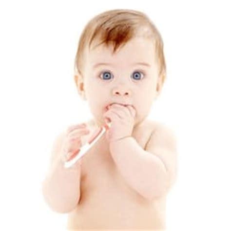 ab wann baby zähne putzen zahnpflege babyern 228 hrung