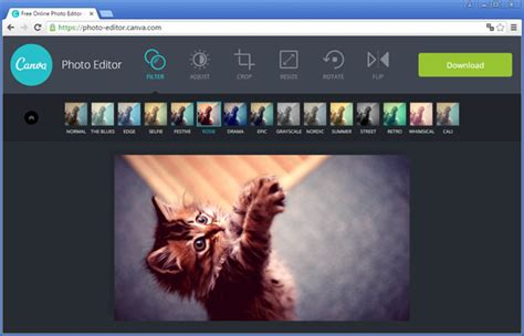 canva edit edite fotos online com o canva photo editor
