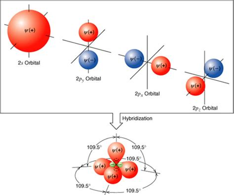 cadenas carbonadas del atomo de carbono kimika organica