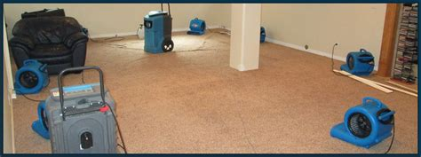 upholstery cleaning albuquerque remediation sanicare carpet cleaning albuquerque