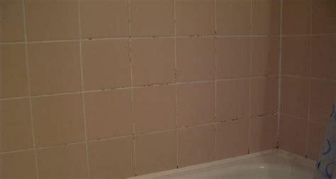 kosten badkamer verwijderen schimmel badkamer verwijderen badkamer courant