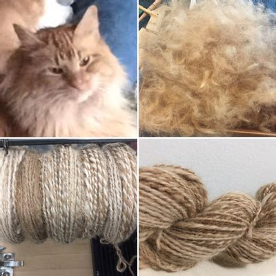 cat fur knitting spun cat and hair yarn
