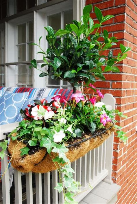 Indoor Planters Toronto by Seasonal Outdoor Planters Plant Decor Toronto S Indoor