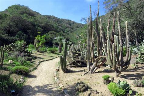 Wrigley Botanical Gardens Wrigley Botanical Garden Picture Of Wrigley Memorial Botanic Garden Avalon Tripadvisor
