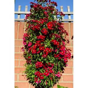 flower tower planter wayfair uk