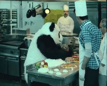 kitchen gif panda in the kitchen gif panda cooking sauce discover