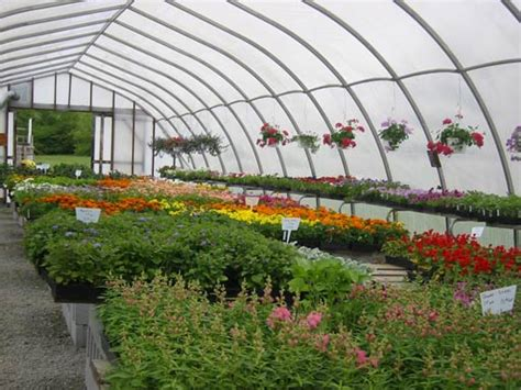 greenhouses advanced technology for protected horticulture books greenhouse
