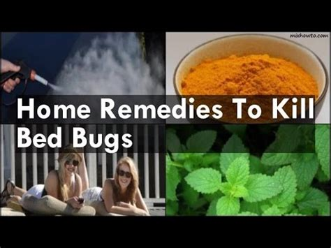 home remedies to kill bed bugs