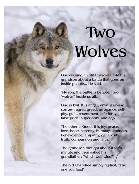 the last wolf the legend of all wolves books two wolves new earth energies
