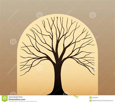 what does the tree symbolize tree symbol royalty free stock image image 22059206