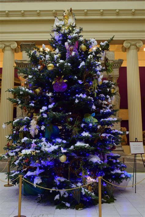 christmas trees  carnegie museum  natural history  salute  scotland   hometown hero