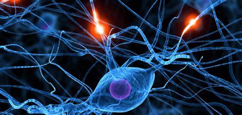 rottura vasi sanguigni inizi 242 tutto con un forte mal di testa l ictus la mente