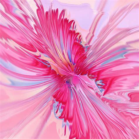 pink drawing carnation pink digital art by anastasiya malakhova