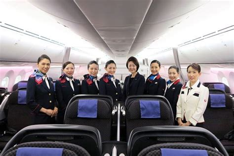 Cabin Crew In Singapore by 25 Best Ideas About Airlines In Singapore On