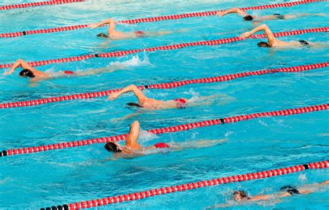 swimming workouts with best picture collections