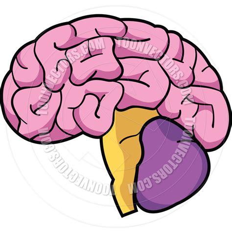 brain clipart brain clipart 101 clip