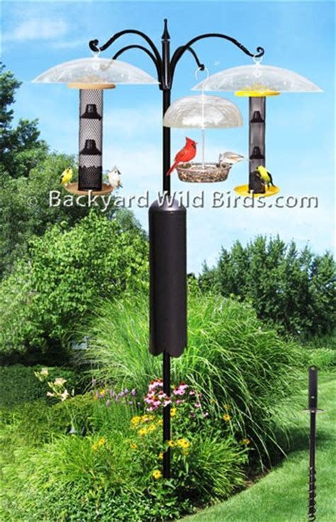 raccoon proof bird feeder pole system at backyard wild birds