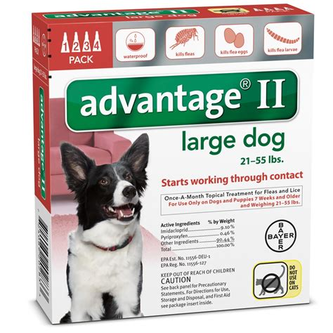 flea tick advantage dogs for 4 month advantage ii flea large for dogs 21 55 lbs