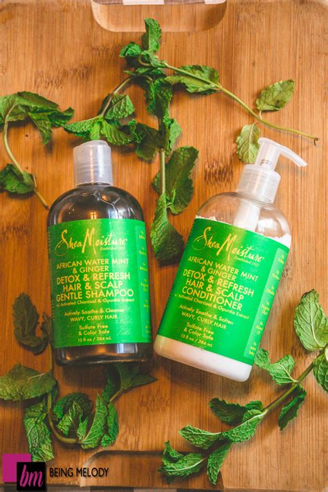 Shea Moisture Detox And Refresh Conditioner Review by Shea Moisture Water Mint Hair Scalp
