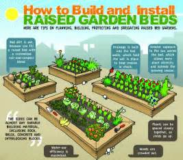 How To Prepare Raised Garden Bed - raised garden beds steve hidder real estate