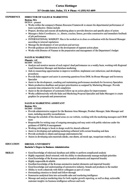 resume objective exles for sales and marketing sales and marketing resume director of sales and