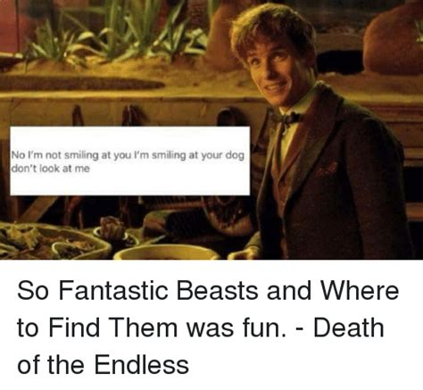 Where To Find Funny Memes - 25 best memes about fantastic beasts and where to find