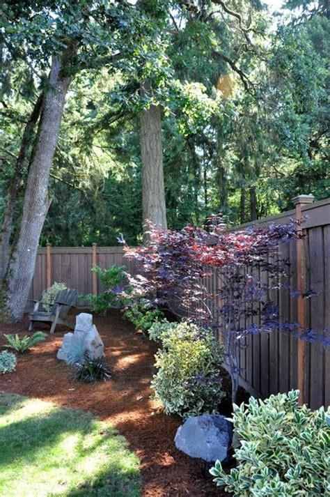 perfect   area   pine tree