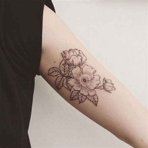top wild roses with images for pinterest tattoos