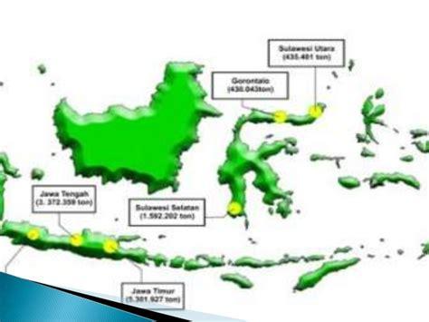 Metode Aborsi Jawa Barat Identifikasi Galur Jagung Unpad Toleran Naungan Pada