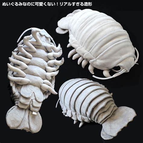 Woodlice Creepy Critters xl isopod realistic sea critter soft plush stuffed