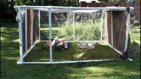 Backyard Jungle Gym Plans Chickens In Pvc Pen On The Move Youtube