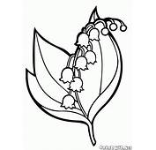 Coloring Page  Lily Of The Valley