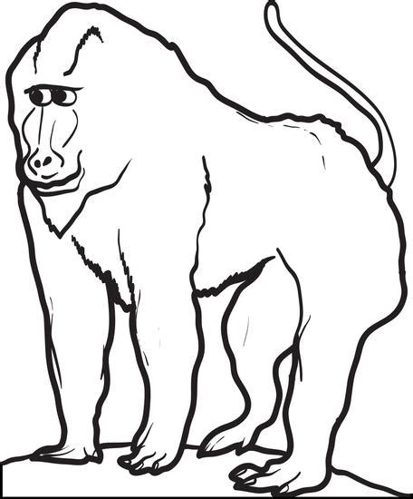 free printable baboon coloring page for kids