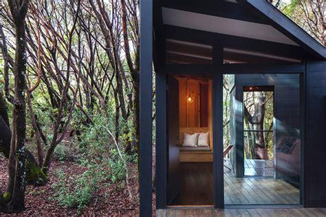 forest house by envelope a d 171 inhabitat green design