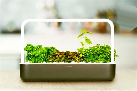 the smart garden kickstarter smart garden brings the power of qvc to your