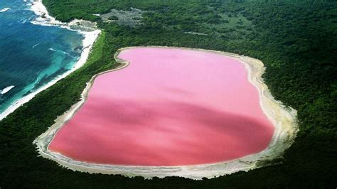 pink lake australia natural pink lake retba senegal