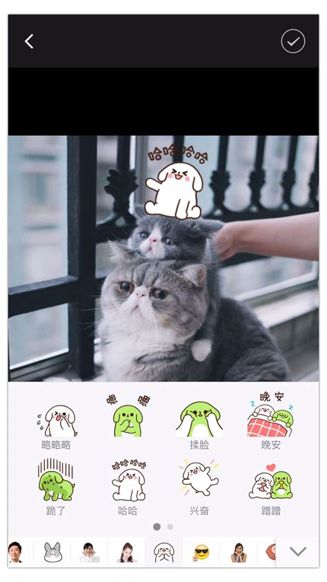 Add Stickers To Pictures