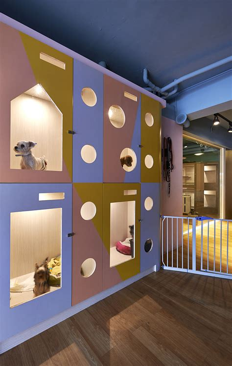 hotels that accept dogs original and impressive petaholic hotel by sms design
