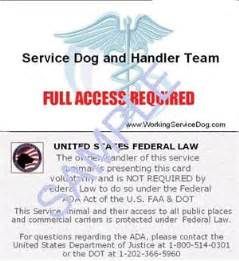 service dog certificate template service dog id template submited images dog certificate template 7 free pdf documents download