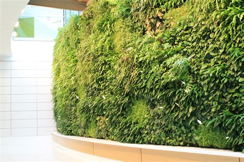 green wall lancaster general barshinger cancer institute green wall